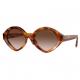 YELLOW HAVANA -  brown gradient
